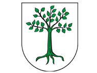 Gmina Kruszwica